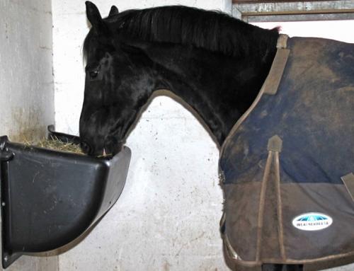 Stråfoder og beskæftigelse til hesten natten lang med Slow Feeder 599